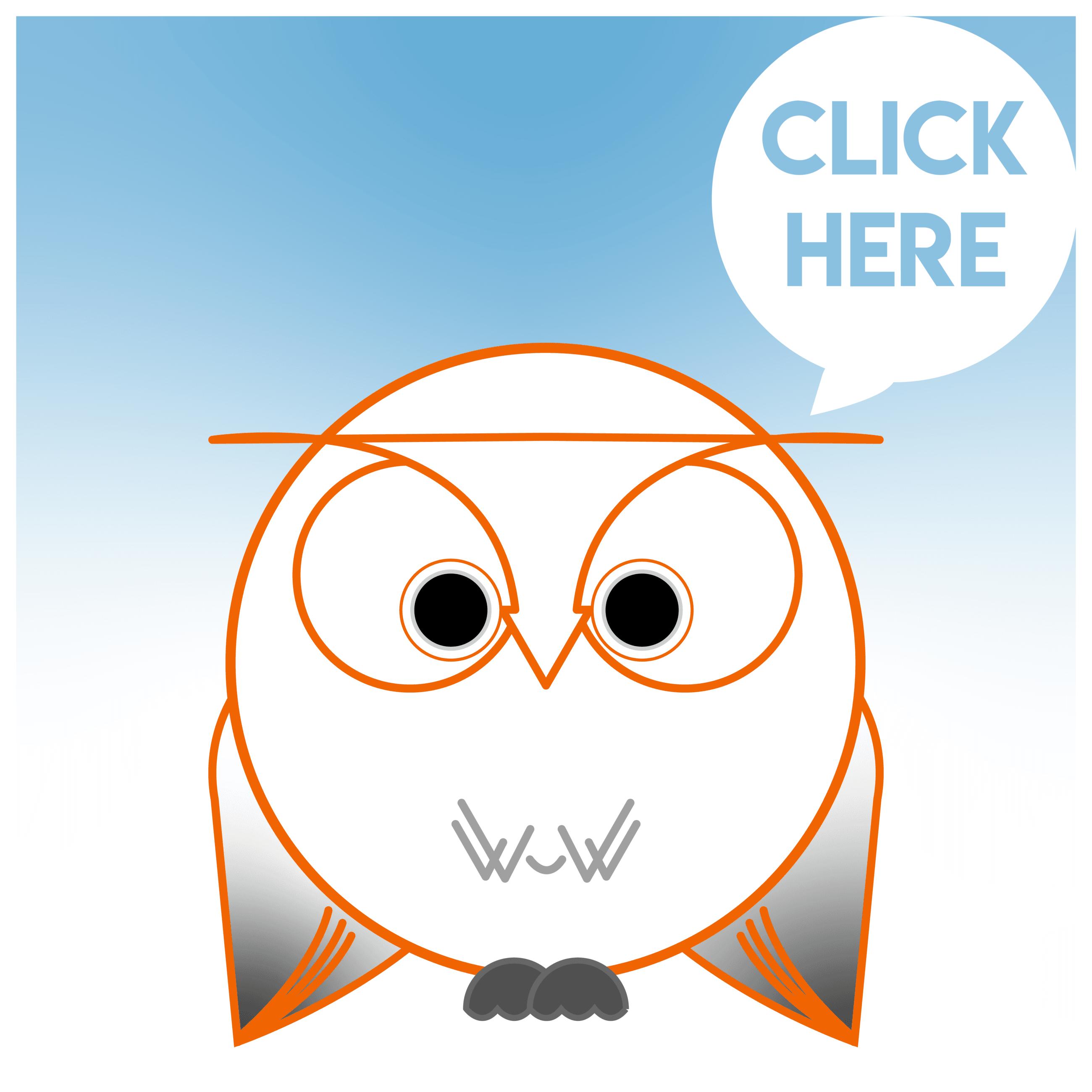 birds of nantucket logo
